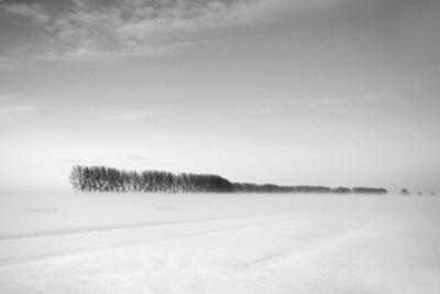 Flatlands, no. 2 by Ruud Peters