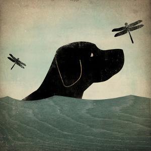 Black Dog Swim by Ryan Fowler
