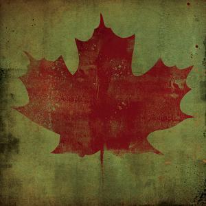 Maple Leaf by Ryan Fowler