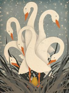 Six Geese A Laying by Ryan Fowler