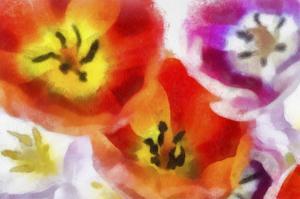 Best Wishes II by Ryan Hartson-Weddle