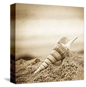 Slefless by Ryan Hartson-Weddle