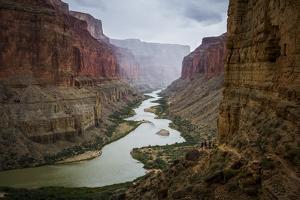 View From Nankoweap Trail, Grand Canyon, Colorado River, Arizona by Ryan Krueger