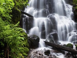 Fairy Falls in the Columbia River Gorge Outside of Portland, Or by Ryan Wright