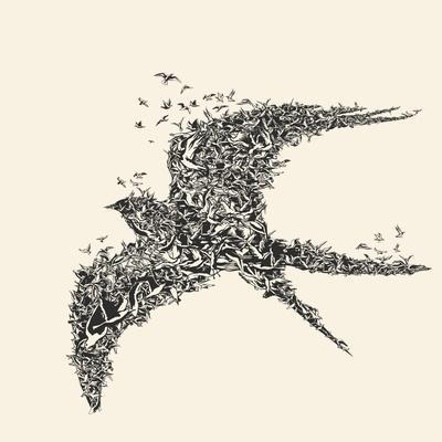 Flock of Birds in Bird Formation