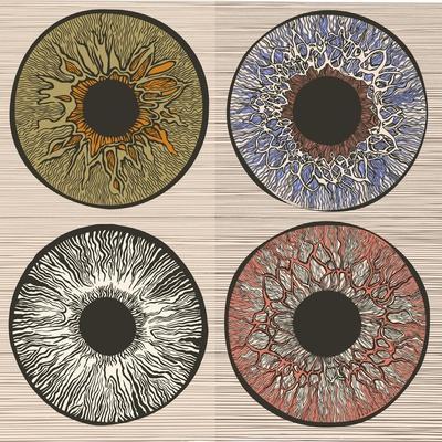 Pupil Variations. Macro Human Eye.