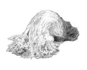 Abstract Creature with Black Grain by Ryuichirou Motomura