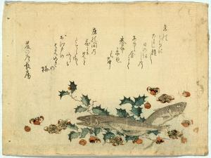 Hiiragi Ni Iwashi Ni Ume by Ryuryukyo Shinsai