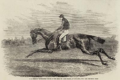 S a Nichol's Newminster, Winner of the Great St Leger Stakes, at Doncaster, 1851--Giclee Print