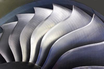 S-curve Fan Blades-Mark Williamson-Photographic Print