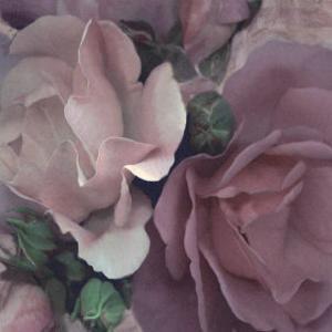 Parfum II by S. G. Rose