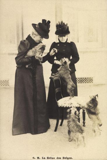 S.M. La Reine Des Belges, Yorkshire Terrier--Giclee Print