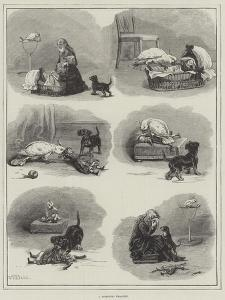 A Domestic Tragedy by S.t. Dadd