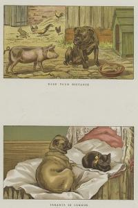 Humorous Dogs by S.t. Dadd