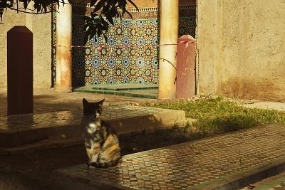 Saadian Tombs, Medina, Marrakesh, Morocco, North Africa, Africa-Jochen Schlenker-Photographic Print
