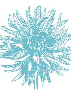 Florette II by Sabine Berg