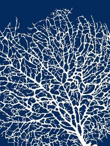 Navy Coral I by Sabine Berg