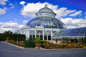 Haupt Conservatory, New York Botanical Gardens, Bronx, New York by Sabine Jacobs