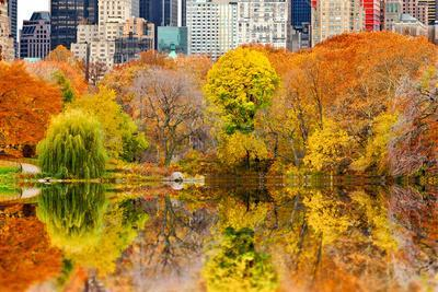The Pond in Central Park, Manhattan, New York City