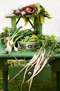 A Still Life Featuring Assorted Fresh Vegetables from the Garden on an Old Green Table by Sabine Löscher