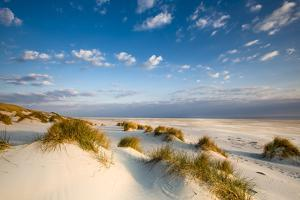 Dunes, Amrum Island, Northern Frisia, Schleswig-Holstein, Germany by Sabine Lubenow