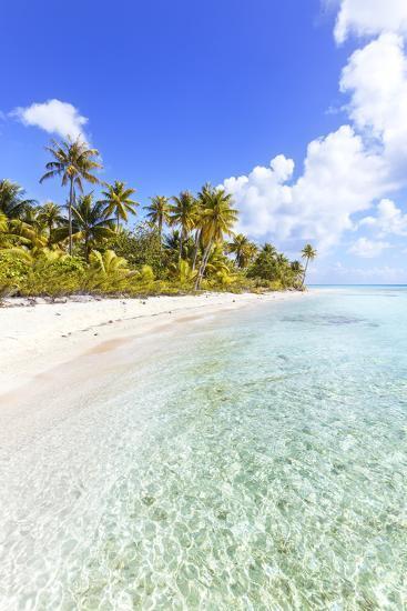 Sable Rose (Pink Sand) Beach in the Lagoon of Tikehau, French Polynesia-Matteo Colombo-Photographic Print