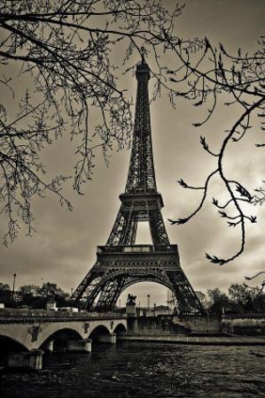 Curves of Eiffel by Sabri Irmak