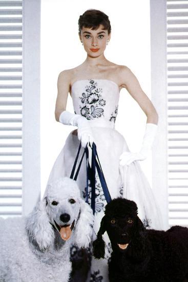 Sabrina, Audrey Hepburn, 1954--Photo