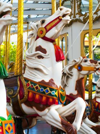 Carousel Horses at Yerba Buena Center for the Arts by Sabrina Dalbesio