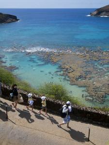 Family Heading to Coral Reef at Hanauma Bay by Sabrina Dalbesio