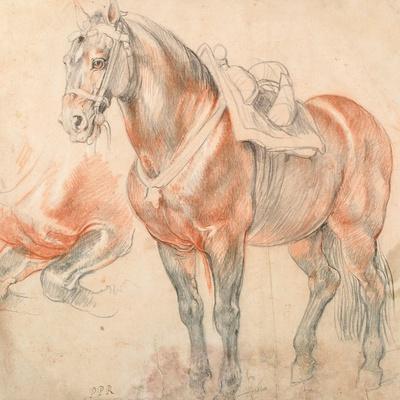 https://imgc.artprintimages.com/img/print/saddled-horse_u-l-pjsbdi0.jpg?p=0