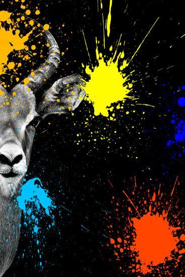 Safari Colors Pop Collection - Antelope Impala Portrait-Philippe Hugonnard-Giclee Print