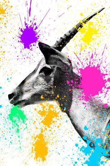 Safari Colors Pop Collection - Antelope Profile-Philippe Hugonnard-Giclee Print