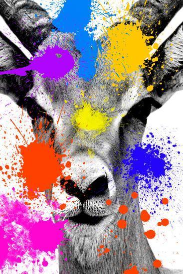 Safari Colors Pop Collection - Antelope Reedbuck-Philippe Hugonnard-Giclee Print