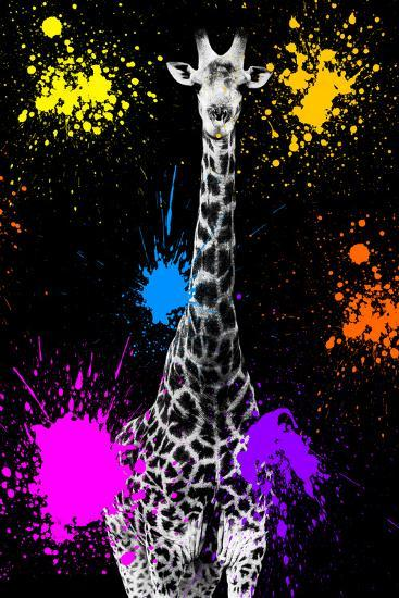 Safari Colors Pop Collection - Giraffe VII-Philippe Hugonnard-Giclee Print
