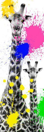 Safari Colors Pop Collection - Giraffes III-Philippe Hugonnard-Giclee Print