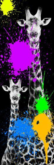 Safari Colors Pop Collection - Giraffes IV-Philippe Hugonnard-Giclee Print