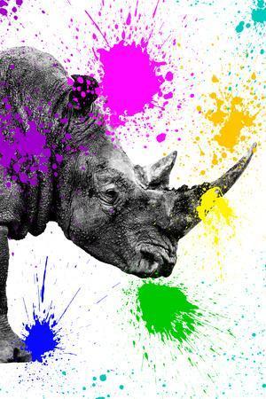 https://imgc.artprintimages.com/img/print/safari-colors-pop-collection-rhino-portrait-iv_u-l-q11dudc0.jpg?p=0