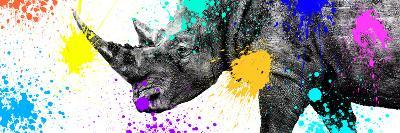 Safari Colors Pop Collection - Rhino Portrait V-Philippe Hugonnard-Giclee Print