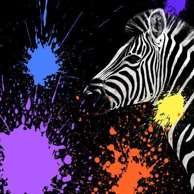 Safari Colors Pop Collection - Zebra II-Philippe Hugonnard-Giclee Print