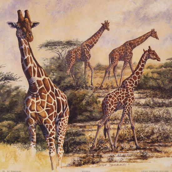 Safari III-Gary Blackwell-Art Print