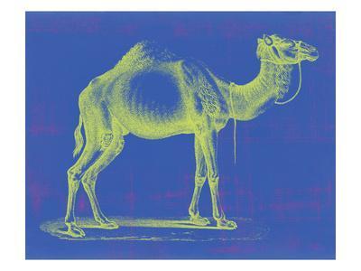 https://imgc.artprintimages.com/img/print/safari-pop-iii_u-l-q1gw7lb0.jpg?p=0