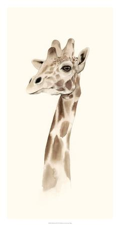 Safari Portrait III-Grace Popp-Giclee Print