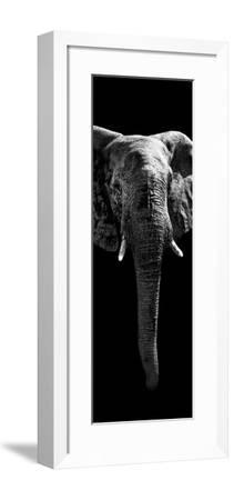 Safari Profile Collection - Elephant Black Edition II-Philippe Hugonnard-Framed Photographic Print