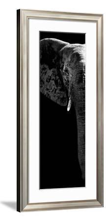 Safari Profile Collection - Elephant Portrait Black Edition V-Philippe Hugonnard-Framed Photographic Print