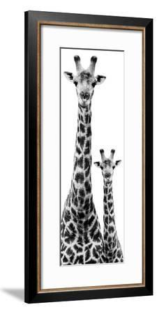 Safari Profile Collection - Giraffe and Baby White Edition IV-Philippe Hugonnard-Framed Photographic Print
