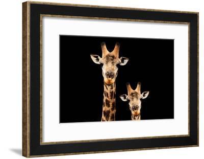 Safari Profile Collection - Portrait of Giraffe and Baby Black Edition V-Philippe Hugonnard-Framed Photographic Print