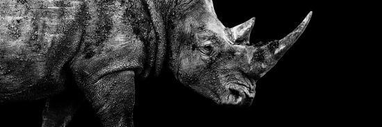 Safari Profile Collection - Rhino Black Edition III-Philippe Hugonnard-Photographic Print
