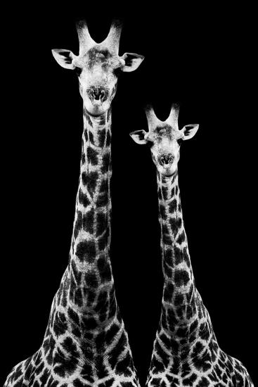 Safari Profile Collection - Two Giraffes Black Edition II-Philippe Hugonnard-Photographic Print