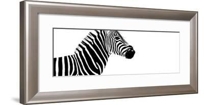 Safari Profile Collection - Zebra White Edition IV-Philippe Hugonnard-Framed Photographic Print